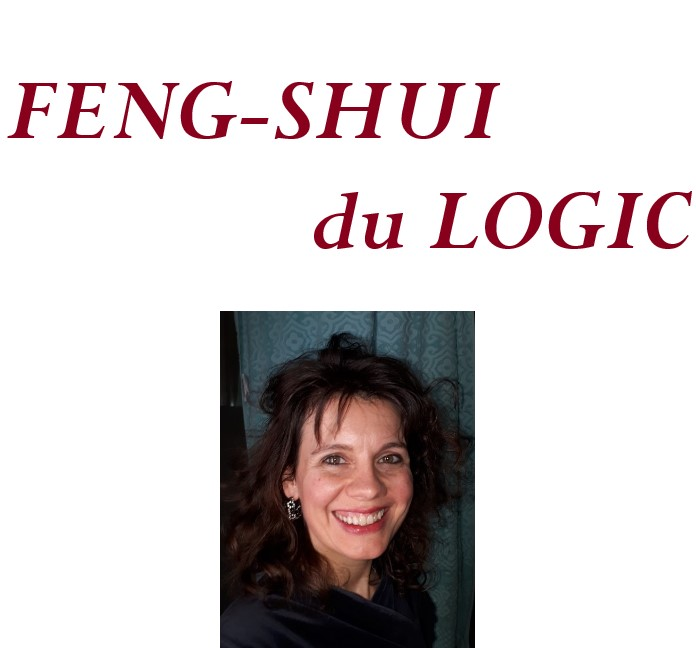 Feng-Shui du Logic